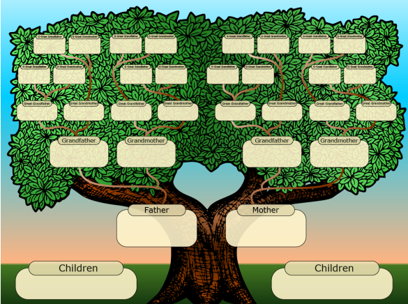 family tree, commonsensedad.com